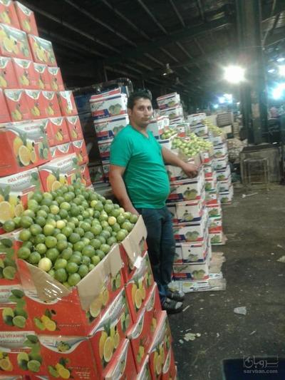 حق العمل و امانت فروشی هندوانه