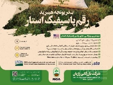 فروش بذر  یونجه | سروبان