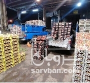 حق العمل کاری عالم شکن محصولات سر درختی و ملون و..