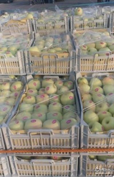 فروش سیب | سروبان