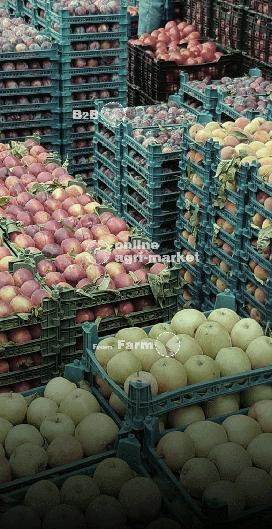 سروبان - بازار عمده محصولات کشاورزی
