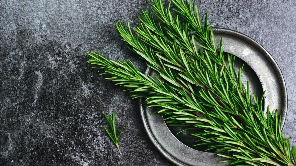 گیاه رزماری سروبان
