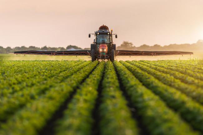 محصولات کشاورزی سروبان
