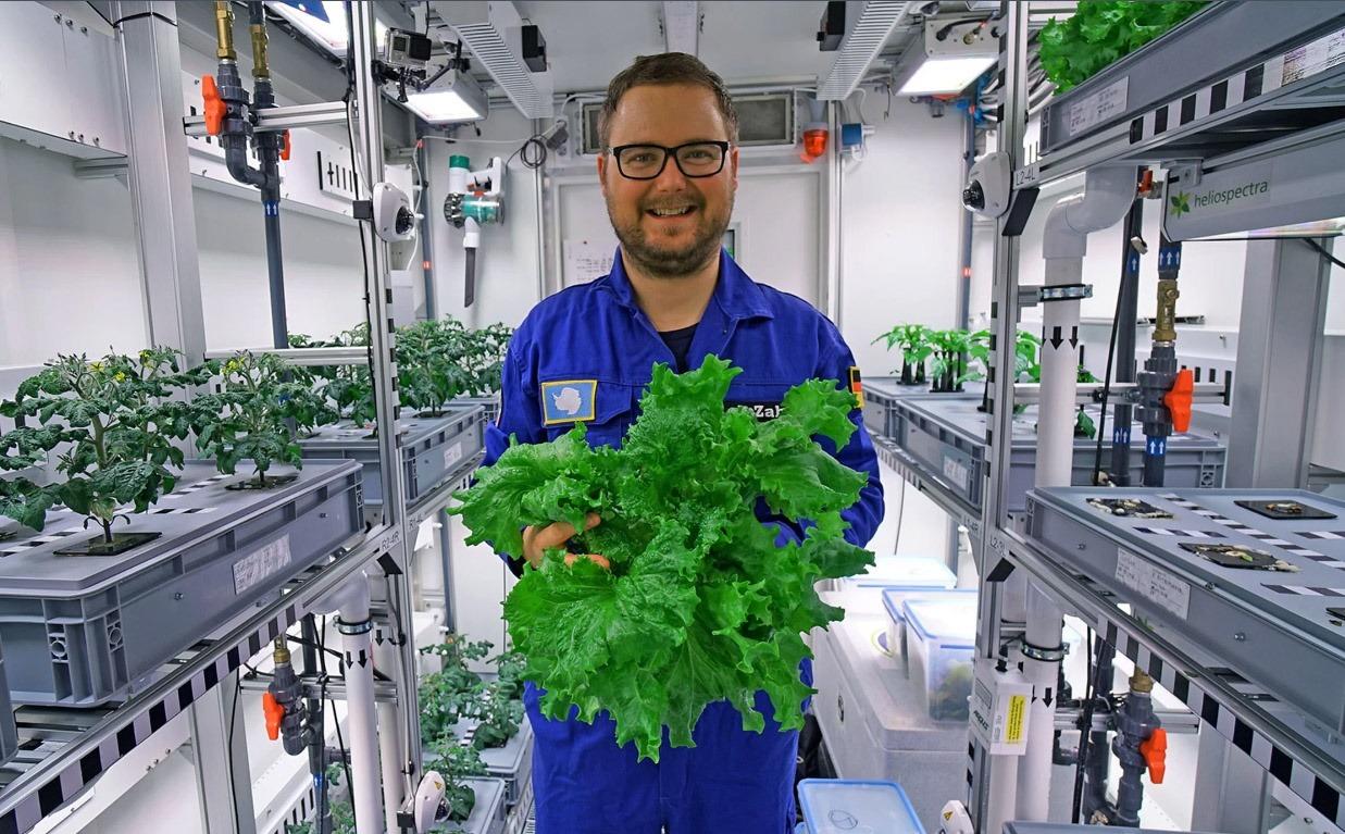 عکس ایده عال از برای محصولات کشاورزی