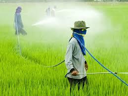 سموم کشاورزی   سروبان