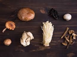انواع قارچ خوراکی | سروبان